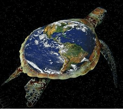 Honu_turtle_world.png