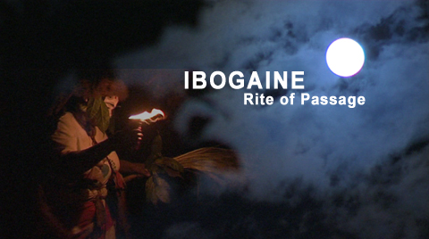 Ibogaine_Rite_of_Passage.jpg