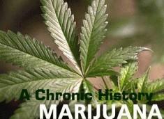 marijuana-a-chronic-history-2010.jpg