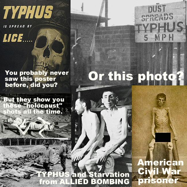 typhus-462042f519.jpg