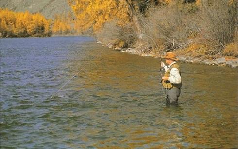 Pour la pêche la société 21