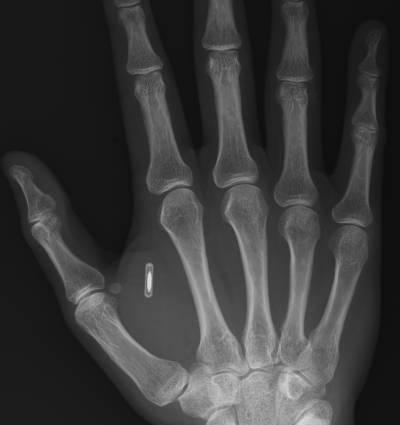 RFID_In_Hand.jpg