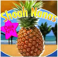 http://www.the-savoisien.com/blog/public/img16/Shoah_nanas.png