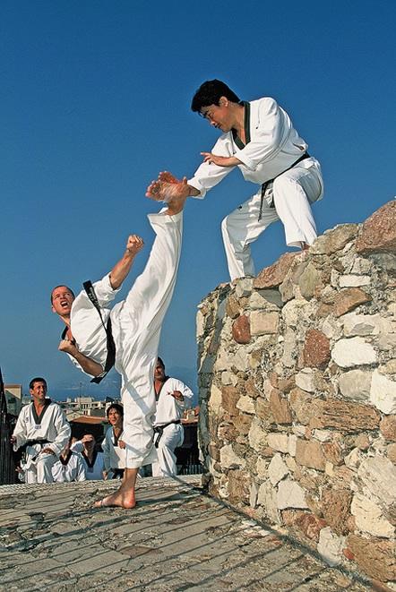 Arts martiaux divers ouvrages the savoisien for Art martiaux