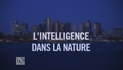 intelligence_nature_enquestes_extra_ordinaires.png