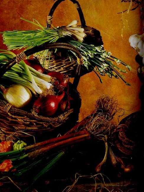 Legumes_Fleurent_Scotto.jpg