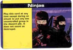 .ninjas_s.jpg