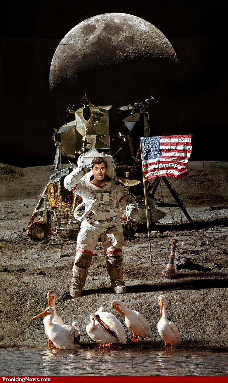 national geographic moon landing hoax - photo #36
